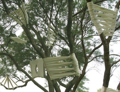 """first aid"" ,2009 Tree, bandages. Various size, Park Dina, Israel"