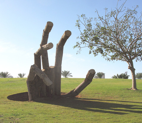 """""""Roots"""" 2011 Park Shikma, Rishon, Israel"""