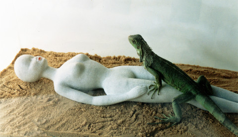 """Bodyguard"",1997 Installation Glass, sand, marble, live iguana. 40 x 80 x 30 cm Efrat gallery collection, Tel-Aviv, Israel"