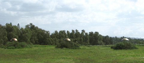 """Domes"" 2010 wood, bushes,paint, 1m x 20m x 2m, Green Gallery, Israel"